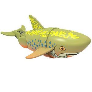 Рыбка-акробат Брукс